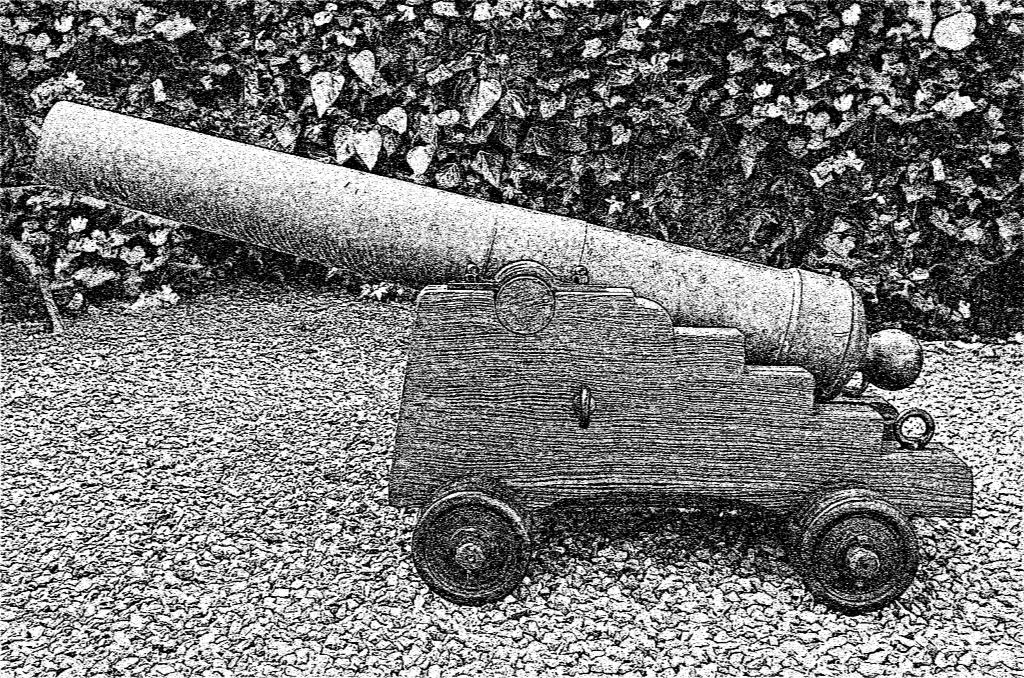 Bear - ch22d gun